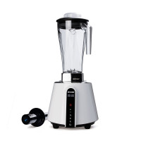 BioChef Living Food Blender
