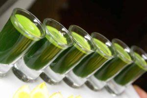 biochef gemini twin gear juicer, best wheatgrass juicer